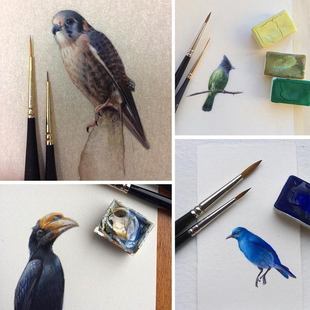 Дина Бродски и ее миниатюрные птицы
