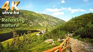 SLEEP, STUDY, RELAXATION, nature sounds at National Park Karkonosze, Lake, Brook,Amazing Calm Nature