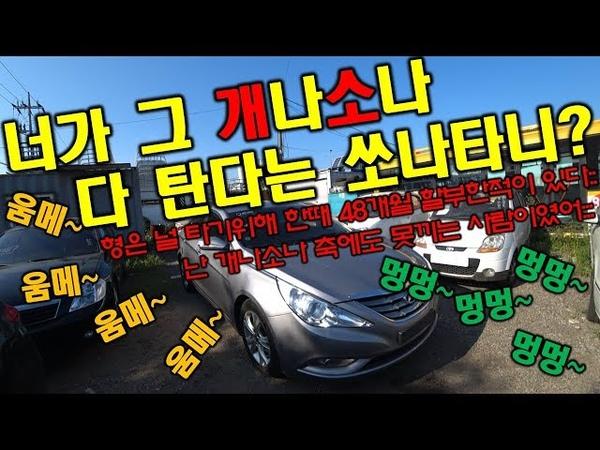 [중고차수출] 요즘은 YF쏘나타 10원도 없이 신차할부로 살수 있다고 하는데 사실