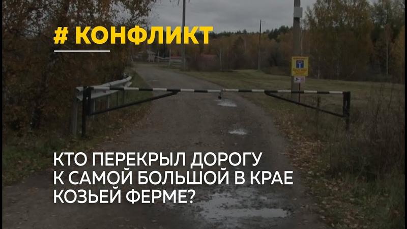 Кто перекрыл дорогу к самой большой в крае козьей ферме