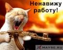 Персональный фотоальбом Михаила Замятина